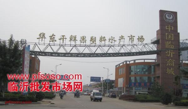 临沂华东干鲜果塑料水产市场 (3)
